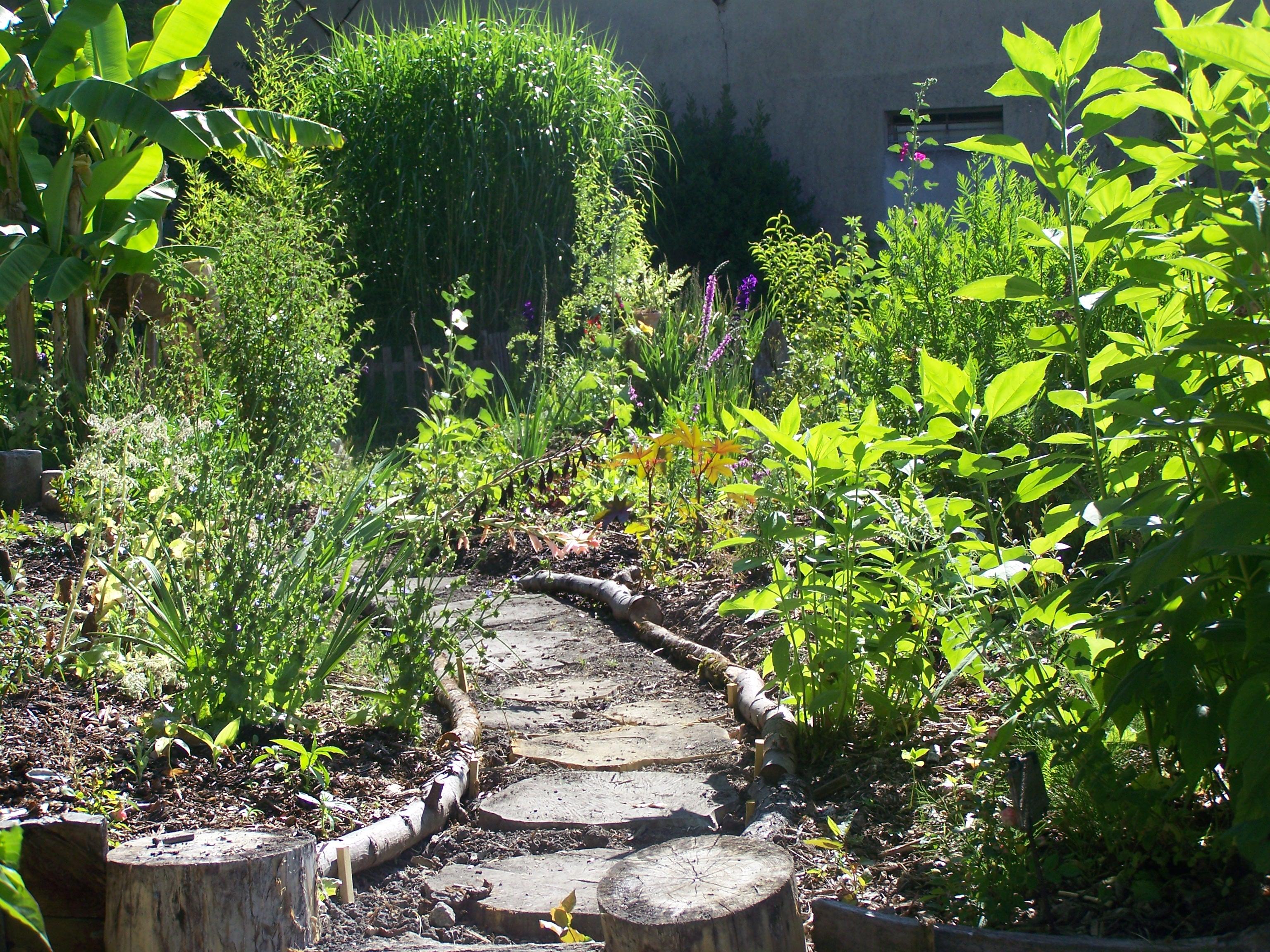 Jardin | Espace Ressource